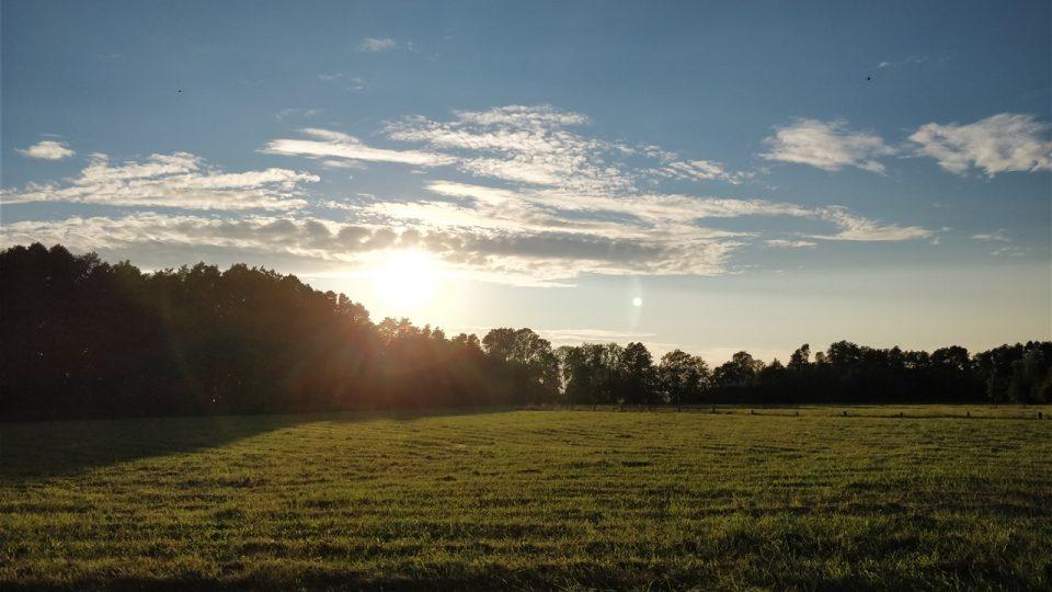 Sonnenuntergang im Oderbruch